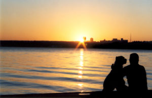Improve Your Mental Health with Pets, Man and Dog Enjoying a Sunrise