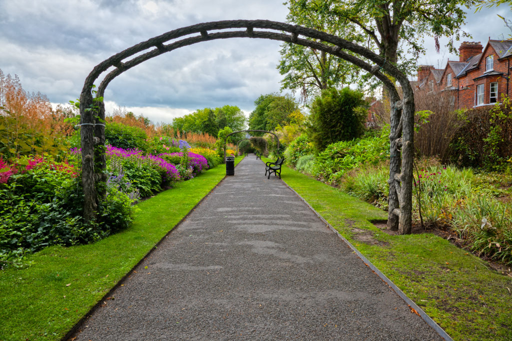 Mindfulness in the Belfast Botanic Gardens