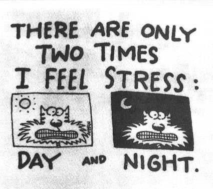 Stress Day & Night