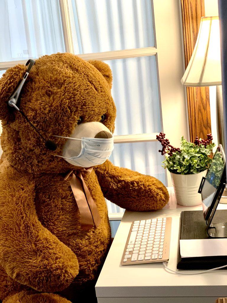 bear typing on computer telehealth Maria Droste
